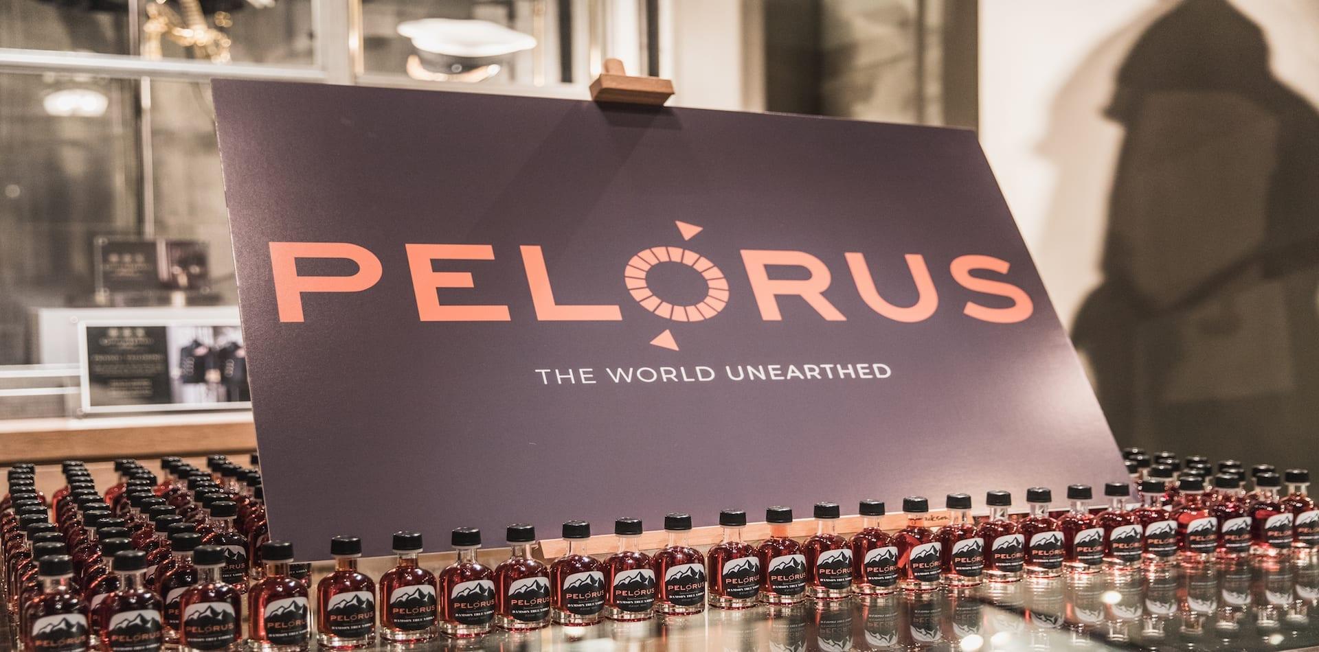 Pelorus Lauch board and slogan