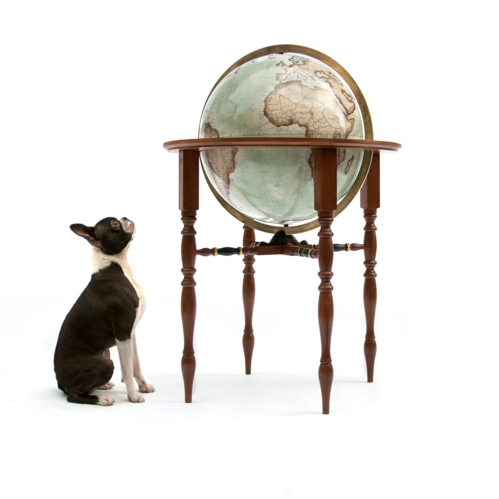 French bulldog gazes up at a 50cm Britannia Floor Standing Globe in mint green