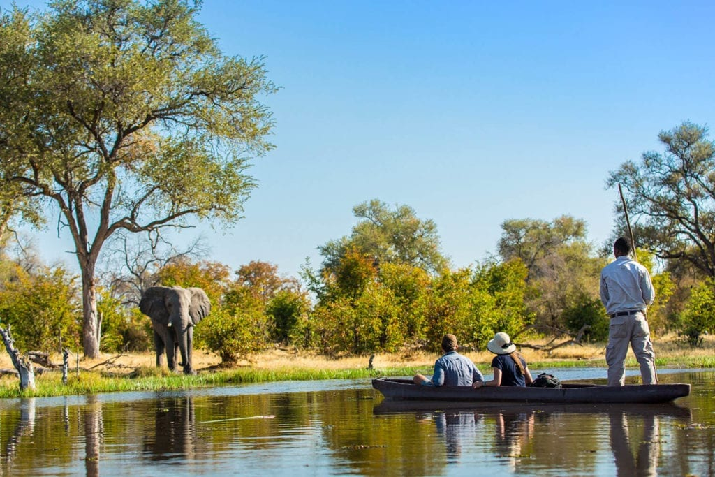 A couple taken by boat close to the shores where an elephant drinks from the water