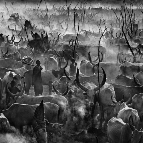 Dinka cattle camp in South Sudan