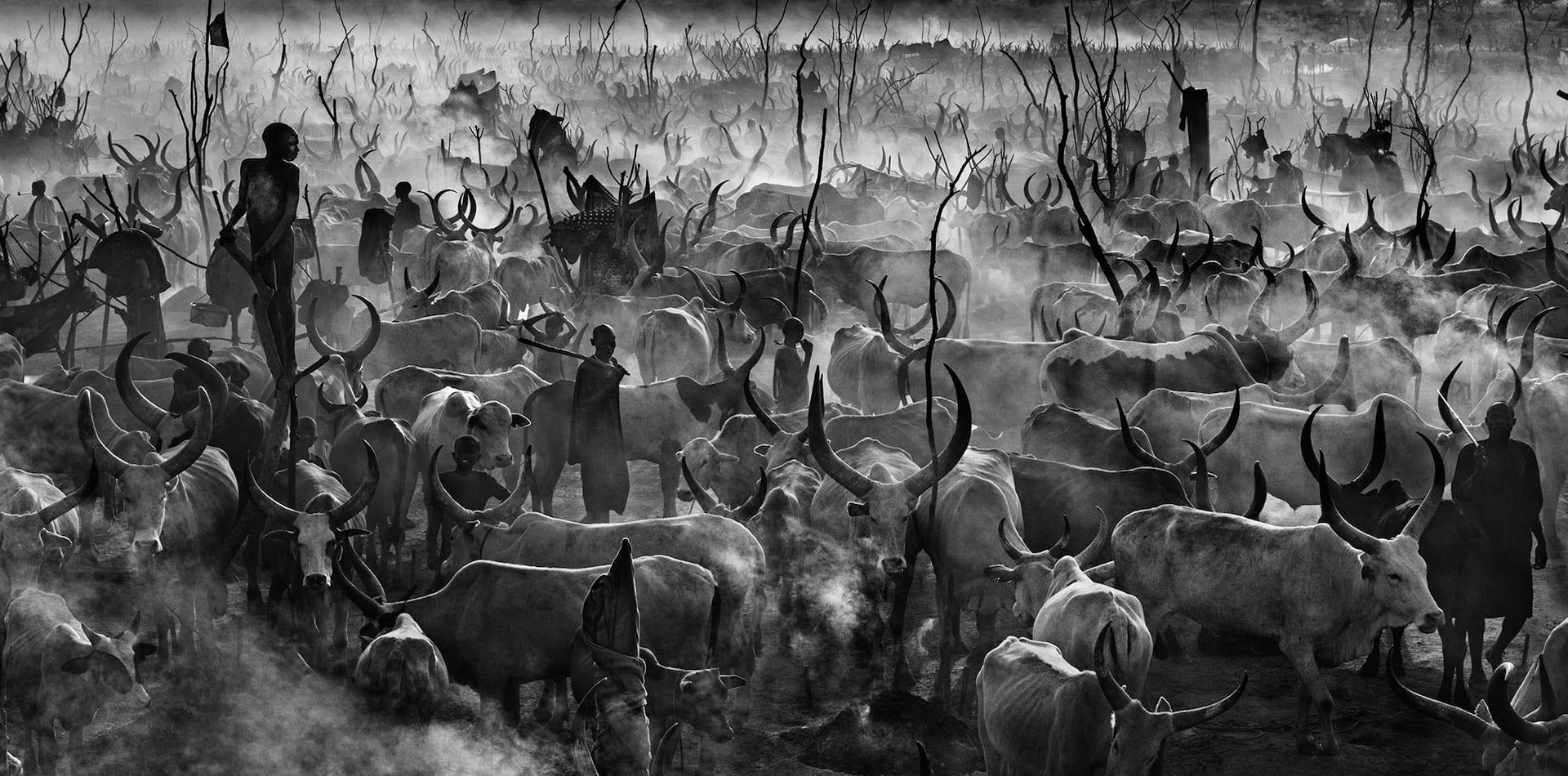 Dinka cattle camp in South Sudan