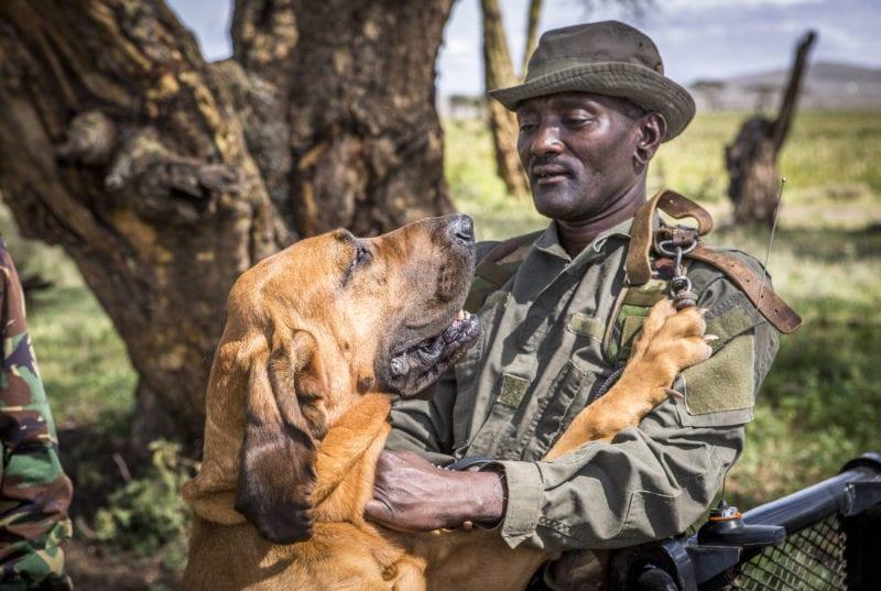 a ranger and a dog