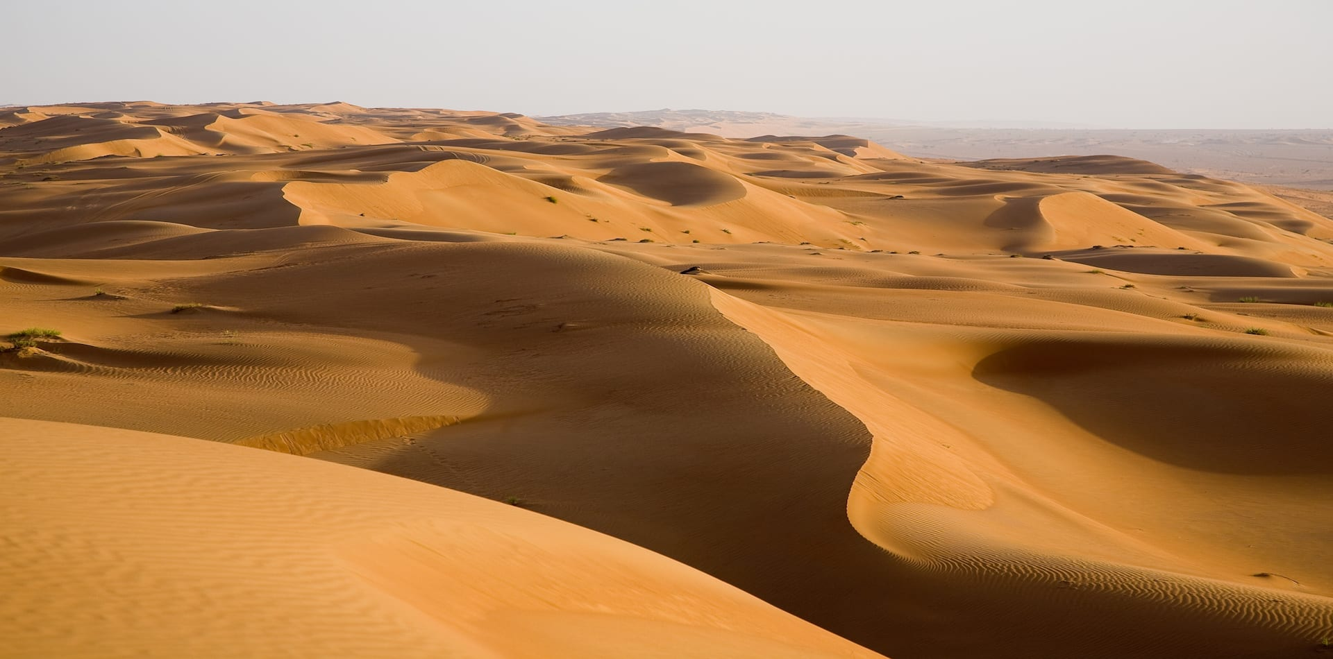 Sand dunes for miles