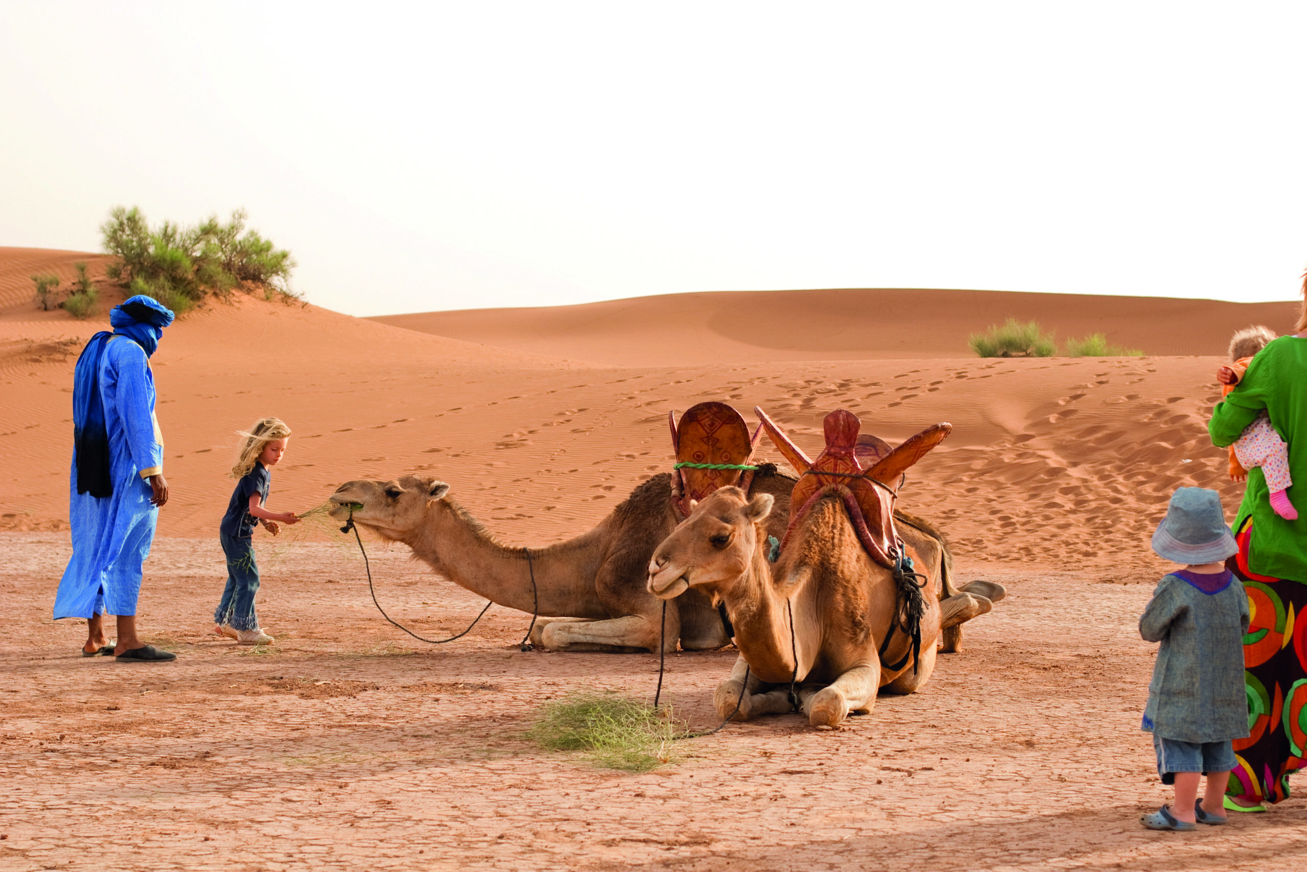 Children with the camels before mounting
