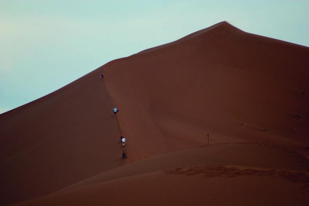 Climb majestic dunes