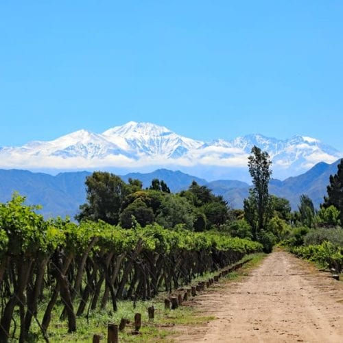 Mendoza, Argentina's wine capital