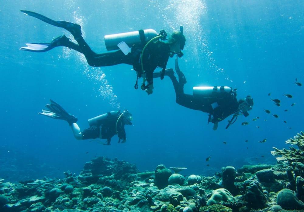 Diving Solomon Islands