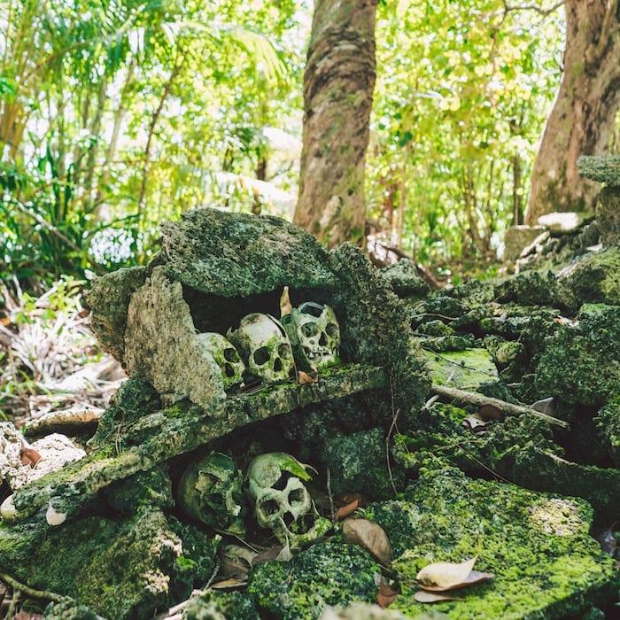 Solomon Islands skulls in the jungle