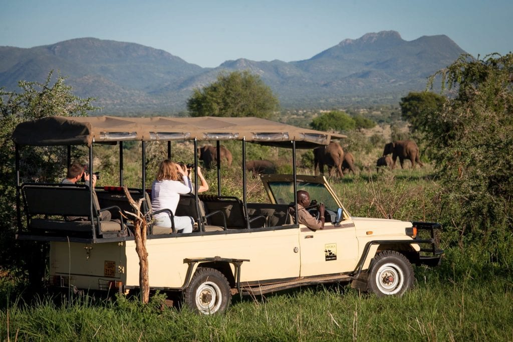 Apoka Safari Wildlife