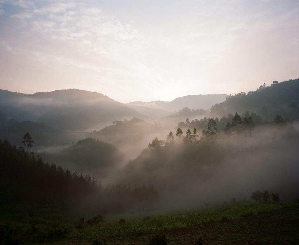 Bwindi Landscape Mist