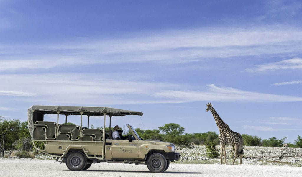 Etosha Game Drive from Onguma The Fort