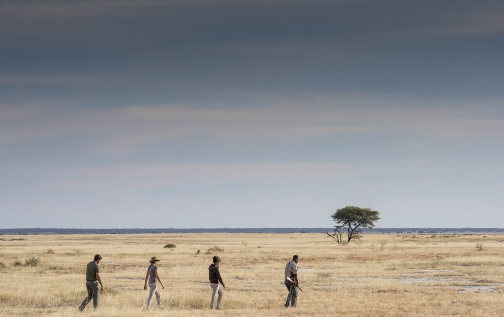 Guided Walk from Onguma Lodge Namibia