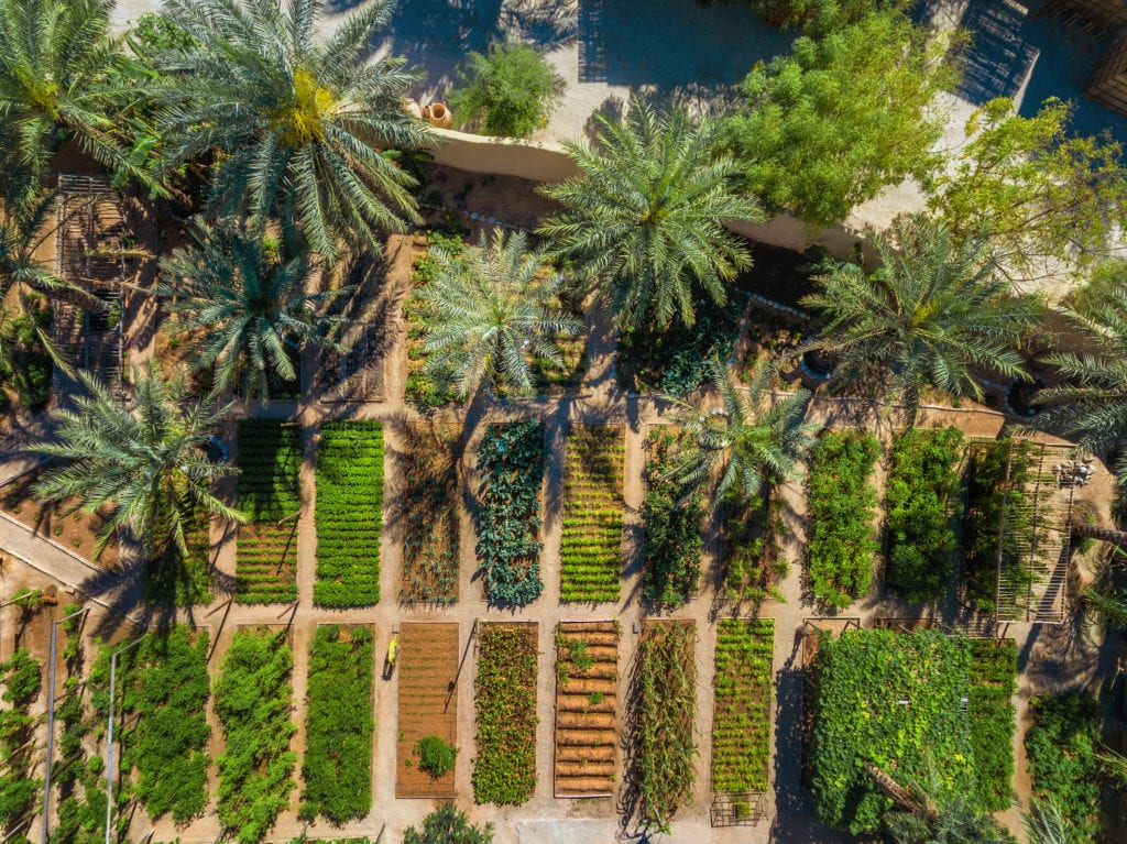 Aerial View of Organic Garden Six Senses Zighy Bay Oman