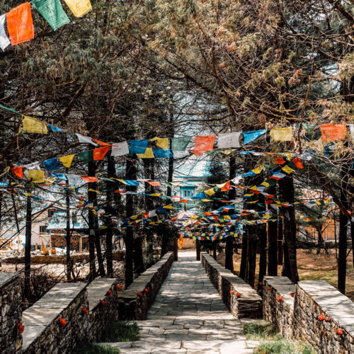 Path Through Trees with Prayer Flags In Nepal