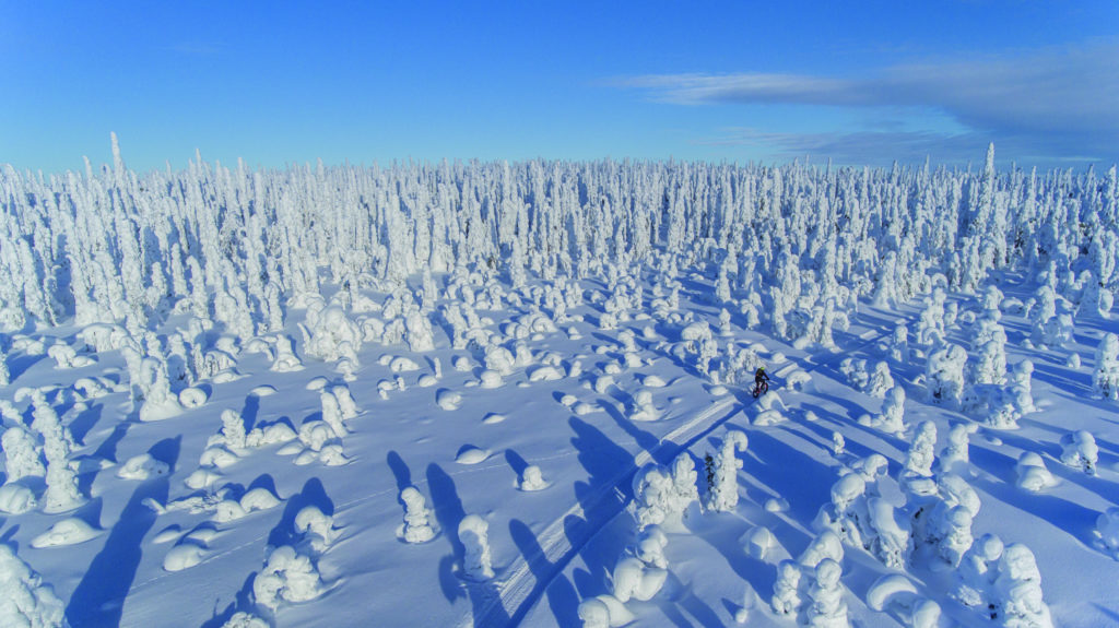 Finland Snow covered Landscape