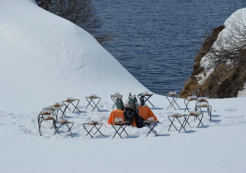 Wild Picnic Snow Kamchatka Peninsula Russia