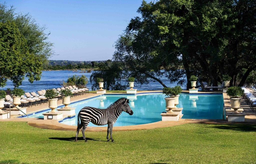 Zebra Pool The Royal Livingstone Hotel Anantara