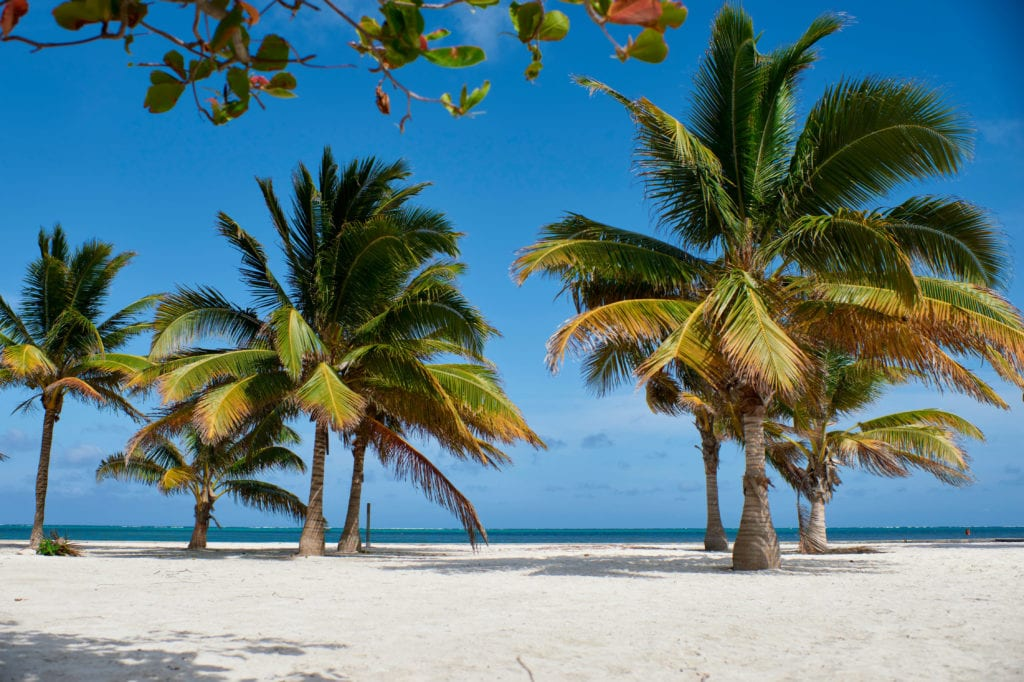 Ambergis Caye Mahogany Bay Village Beach in Belize