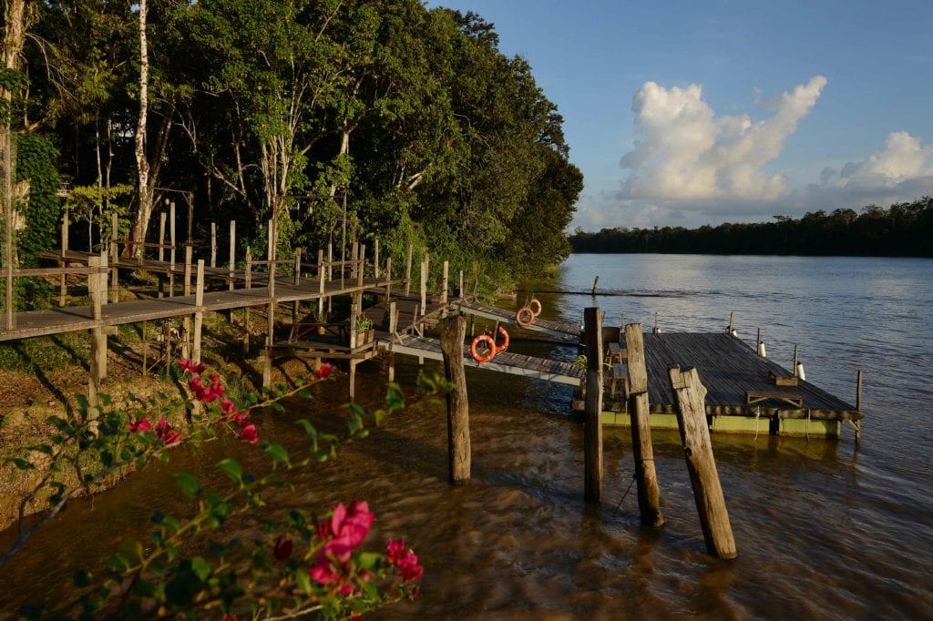 Borneo Sakau Ketty