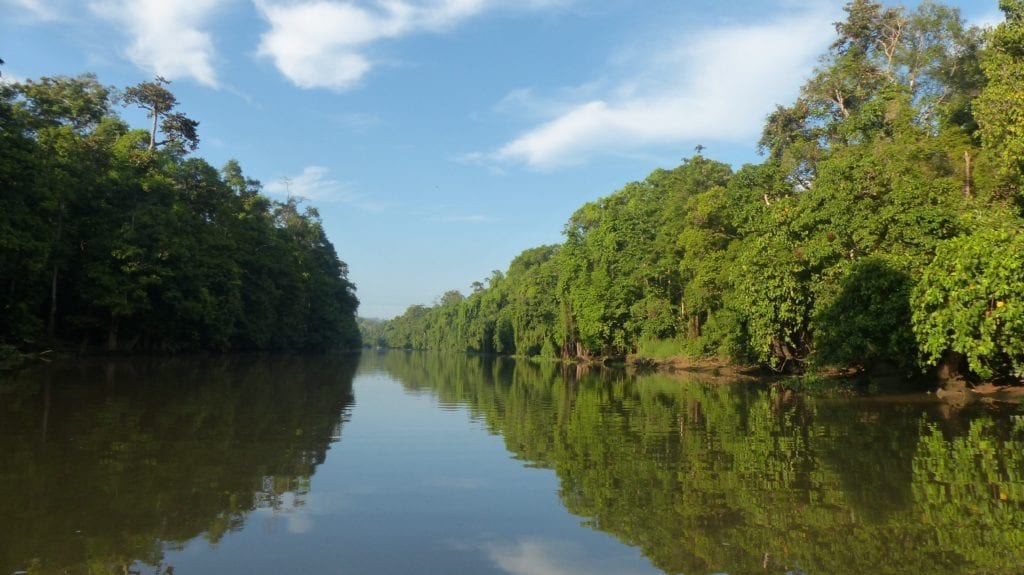 Borneo Sakau River
