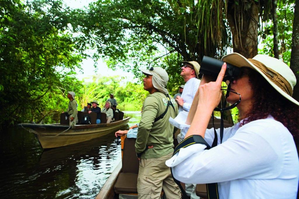 Brazil Amazon Birdwatching Group