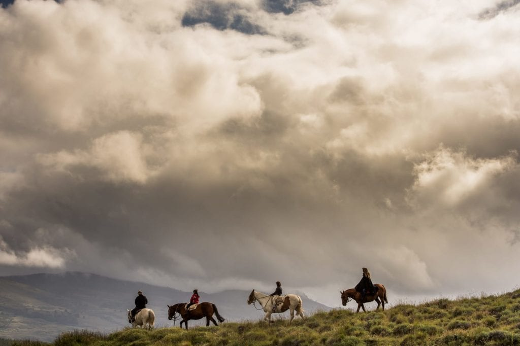 horse trekking along ride in Argentina