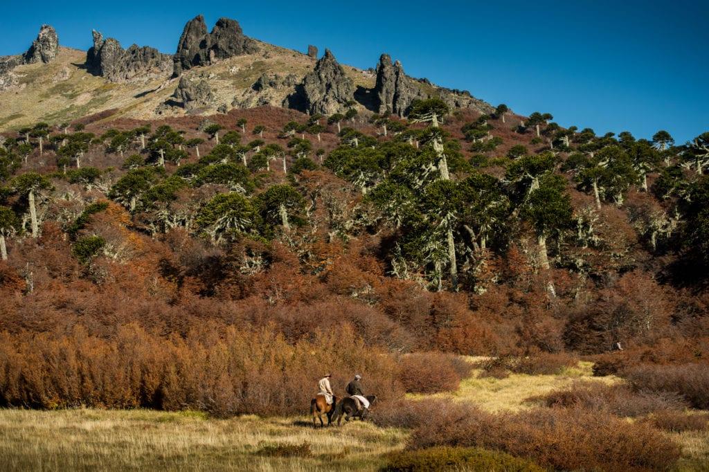 Caballadas horseback excursion through mountains in Argentina