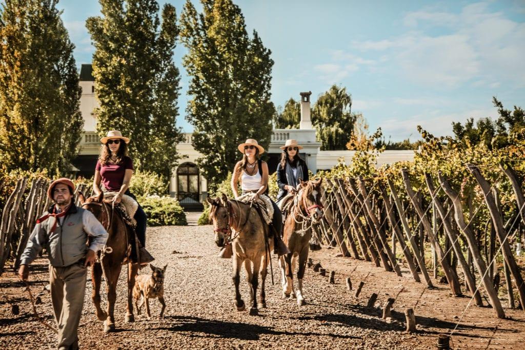 Horse riding through vineyards Cavas Wine Lodge