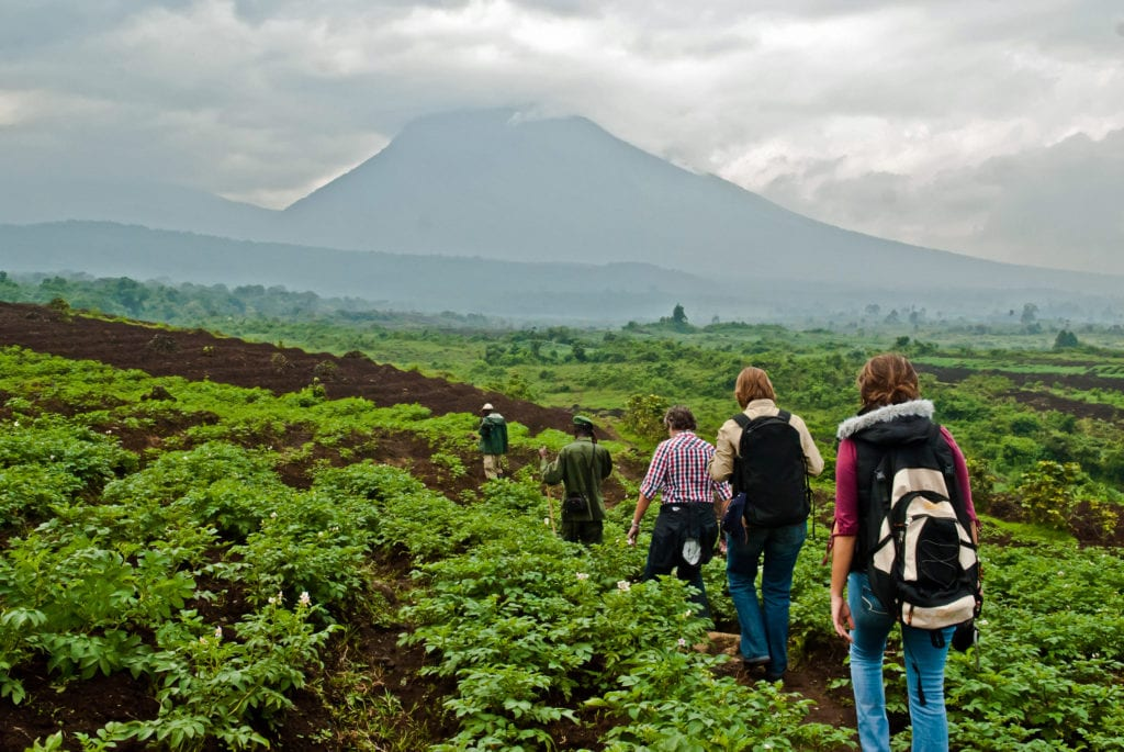 Trekking in Virunga National Park