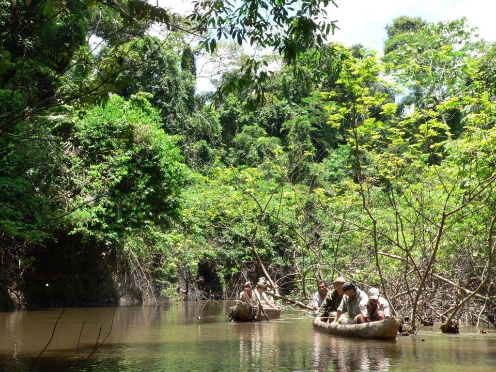 Guyana canoeing down river