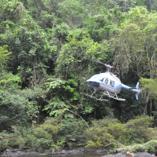 Helicopter take off in the jungles of Guyana