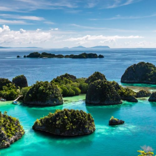Marine Conservation in Raja Ampat