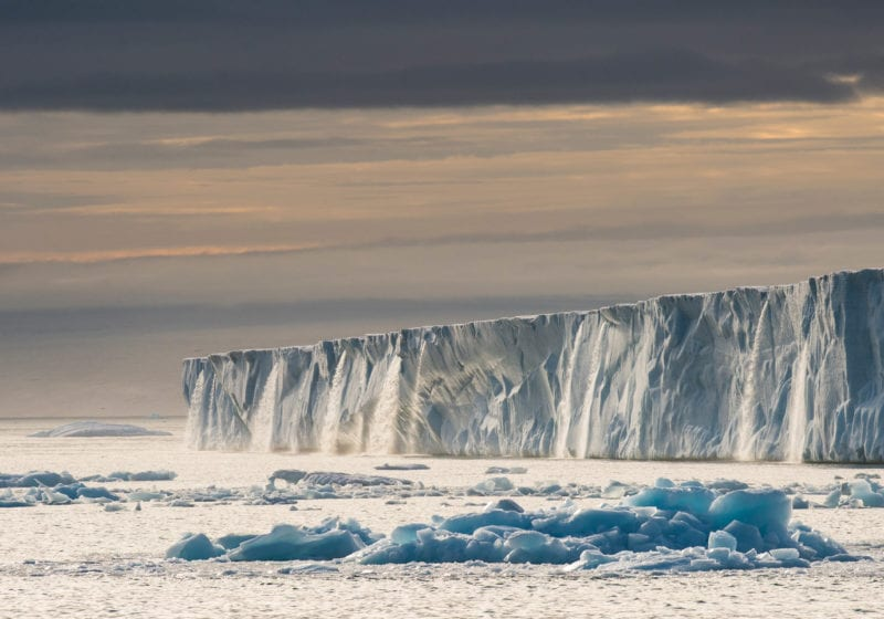 Longyearbyen Svalbard Glacier wildphoto