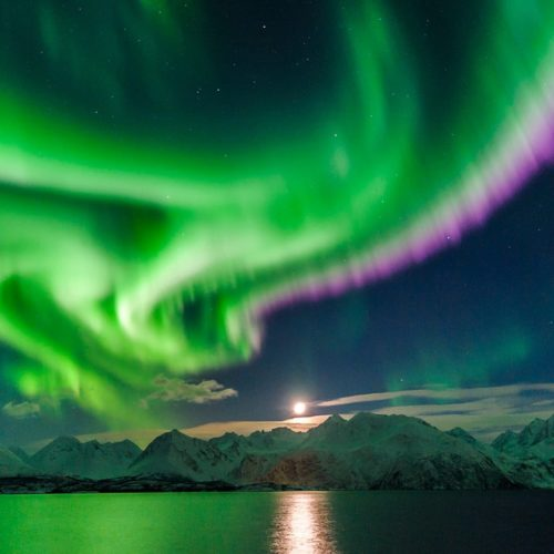 Chase the Northern Lights in Norway