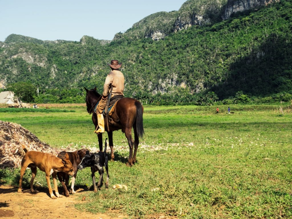 Local Cuban riding a horse