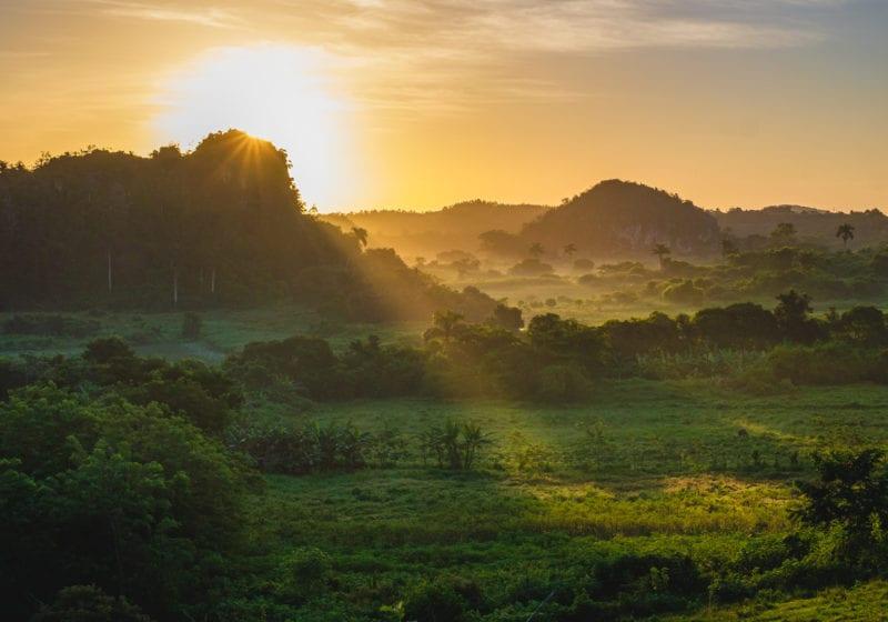 Pelorus Cuba Sun Trees Forests Green