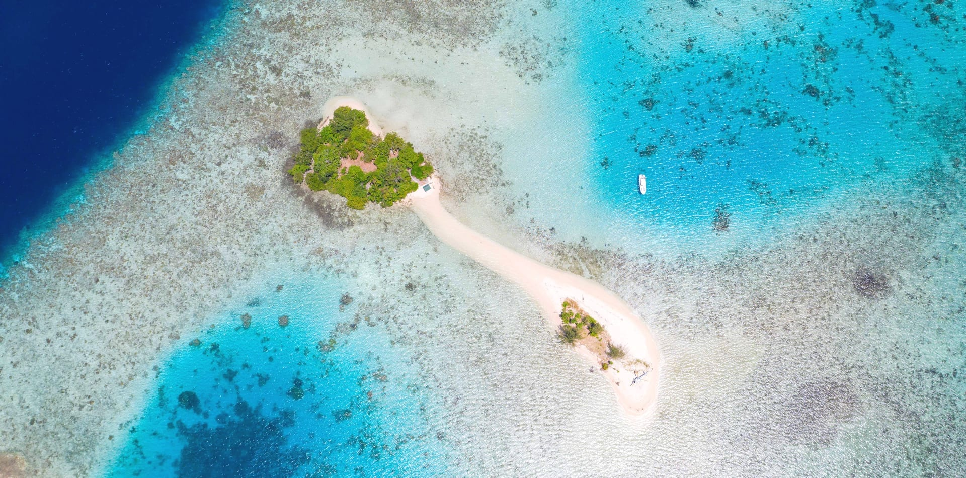 pelorus solomon islands tender island beach