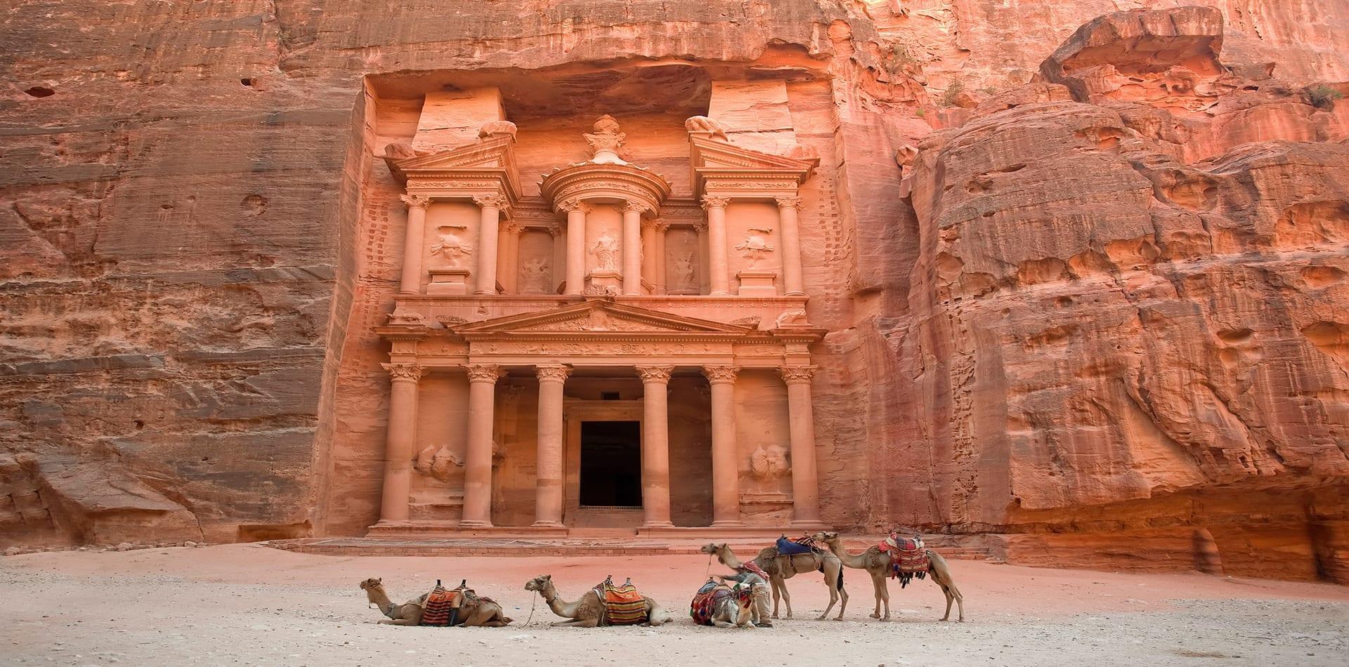 HERO Petra Jordan Camels