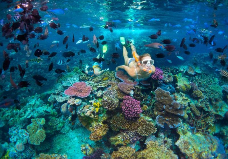 snorkelling efate vanuatu