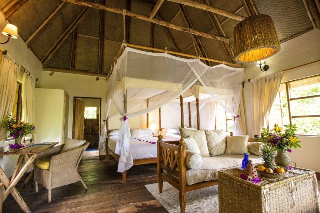 Standard Room Bwindi