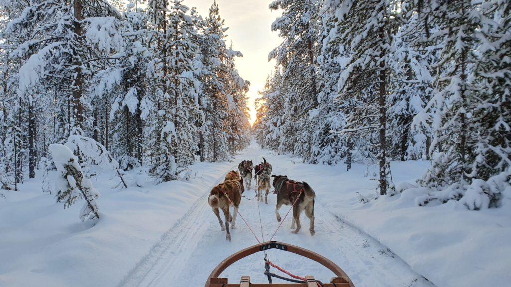 Sweden Arctic Lodge Sledding