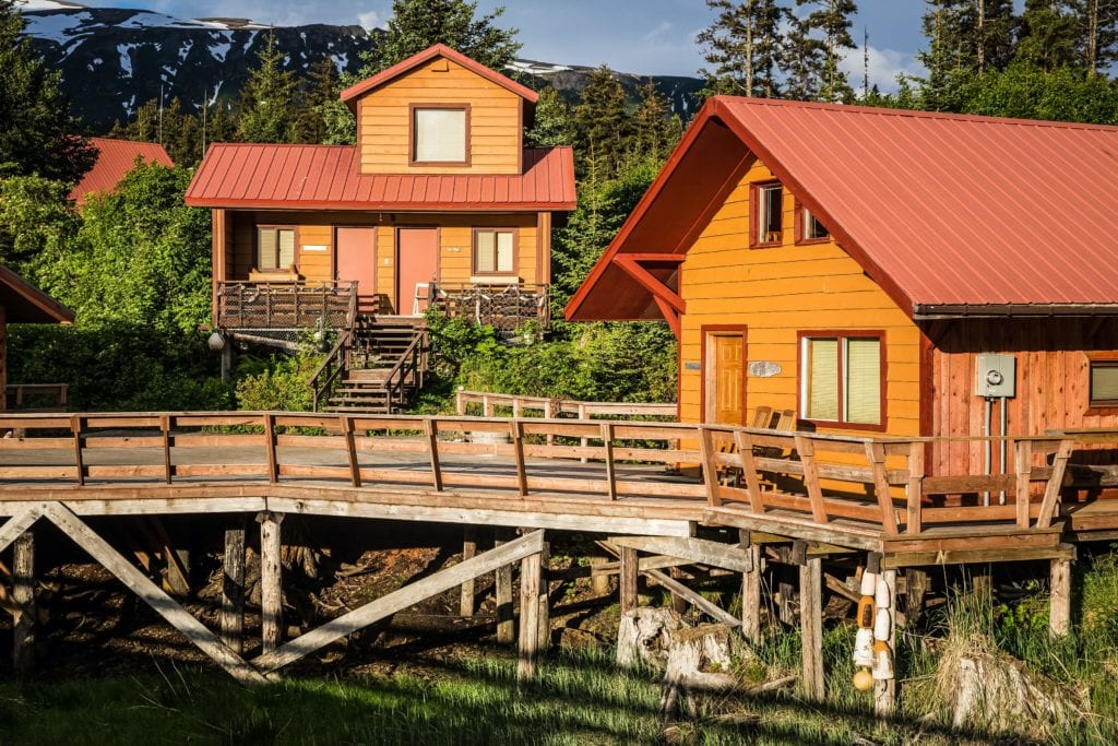 Alaska Tutka Bay Lodge Cabin Steller's Jay and Kittiwake