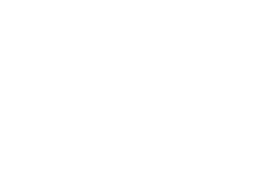 DTO Motorsports white logo