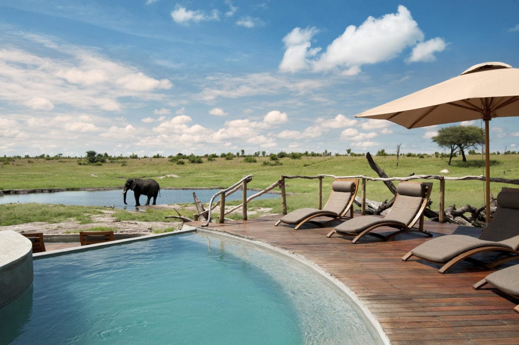 Pool with Elephant at Somalisa Camp in Zimbabwe