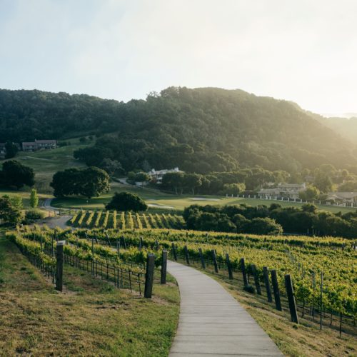 Grounds and Vineyards of Carmel Valley Ranch America