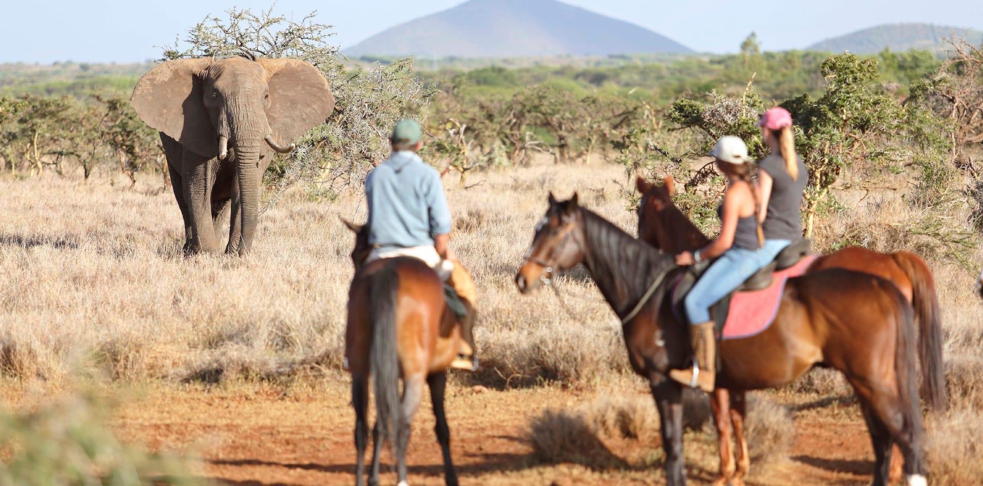 Horseback safari in Kenya
