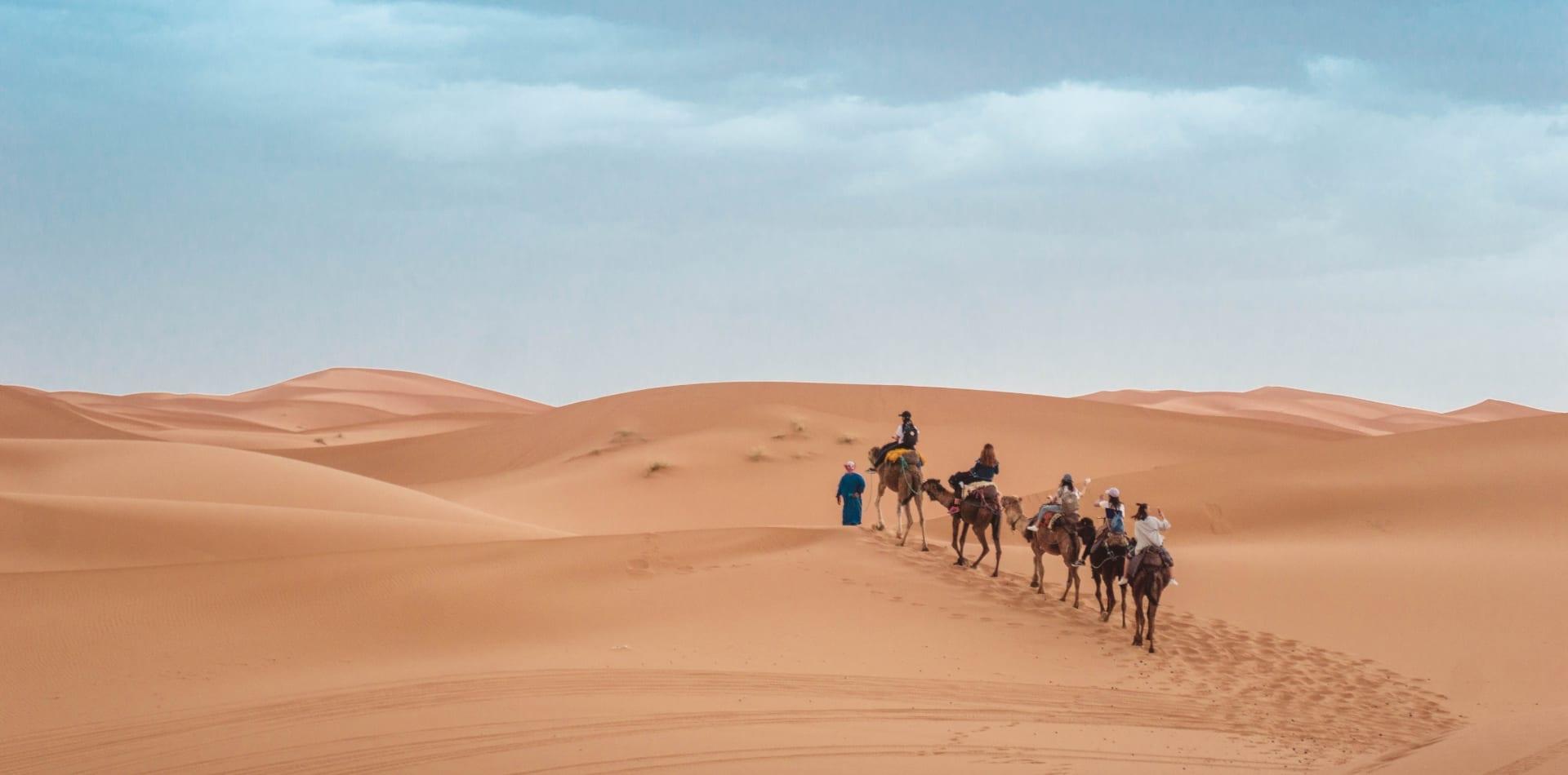 Desert camel trek in Morocco