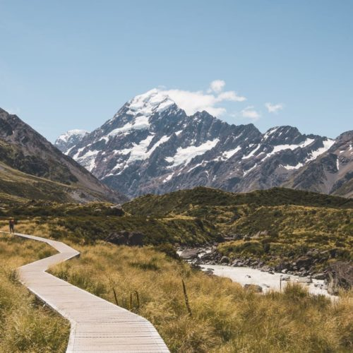 Pathway to the mountains in New Zealand