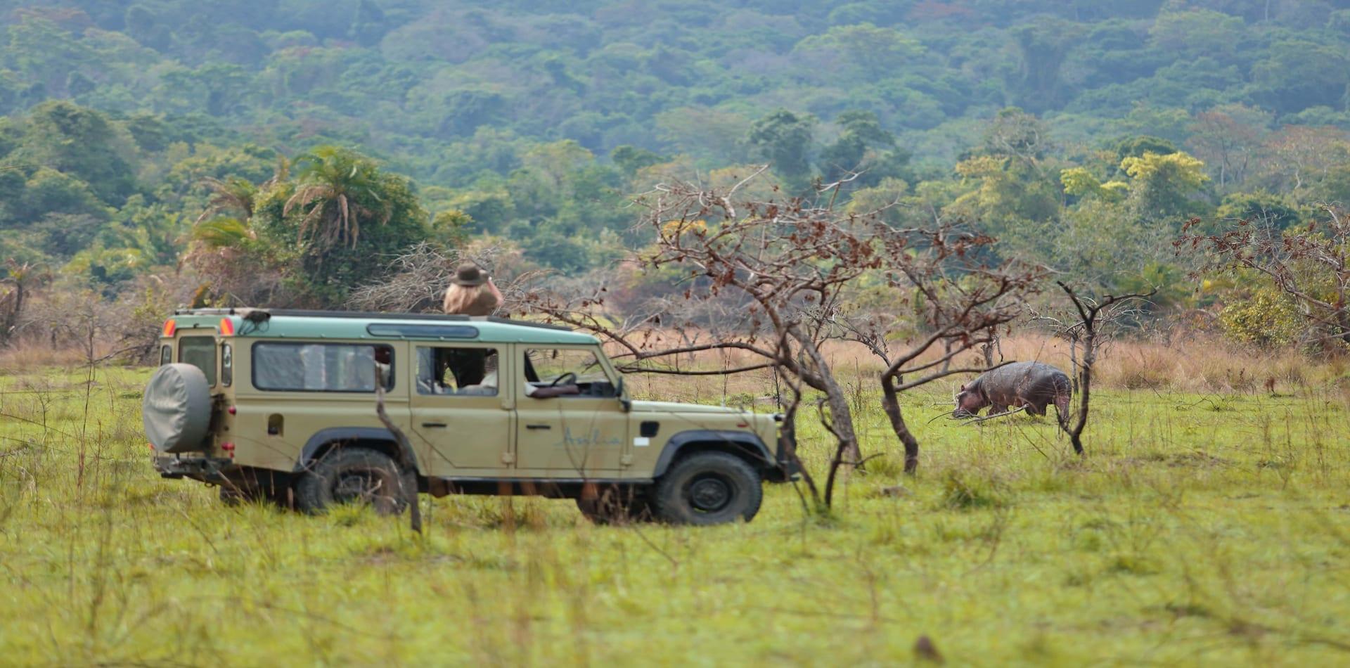 HERO Tanzania Rubondo Island Hippo Spotting on Game Drive