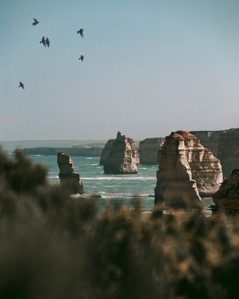 View of Coastal landscape and wildlife in Southern Australia photo by Mwangi Gatheca